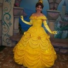 Robe de belle disney