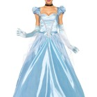 Robe cendrillon adulte